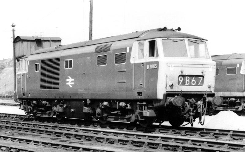 D7065 at Worcester on 26/7/1968