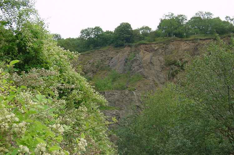 Hollybush Quarry  - 2